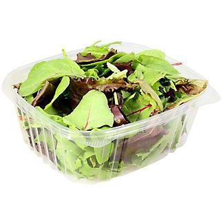 Fresh Organic Bulk Spring Mix