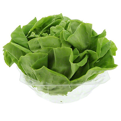 Fresh Live Butter Lettuce, EACH