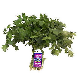 Fresh Organic Cilantro, EACH