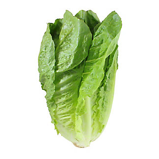 Fresh Organic Romaine Lettuce, EACH