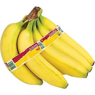 Fresh Organic Bananas, sold by the bunch (5-7 Bananas)