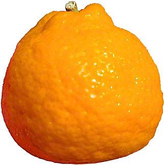 Fresh Kishu Mandarin
