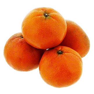 Fresh Ellendale Mandarins, sold by the pound