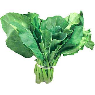 Fresh Gai Lan Chinese Broccoli, LB