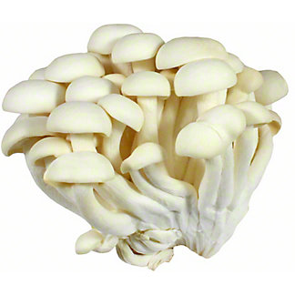 Fresh Alba Clamshell Mushroom, Sold by the pound