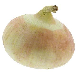 Fresh Organic Sweet Onions
