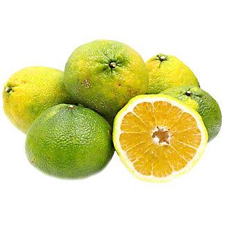 Fresh Ugli Fruit,EA