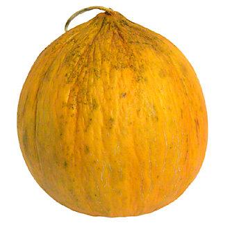 Fresh Casaba Melons, ea