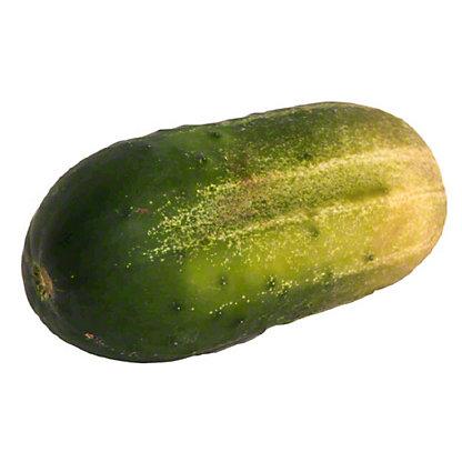 Fresh Pickling Cucumbers