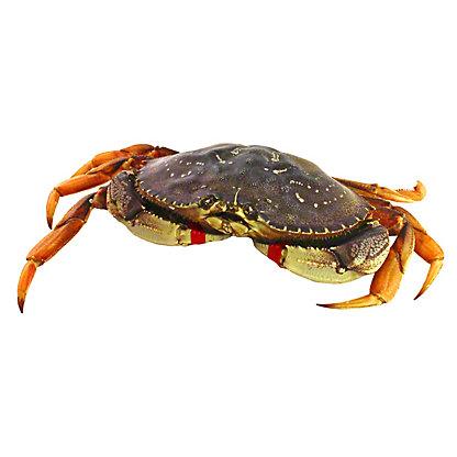 PLU Live Dungeness Crab 90816,LB