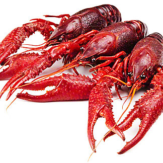 Central Market Live Crawfish, by lb