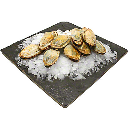 CLAMS SOFT SHELL