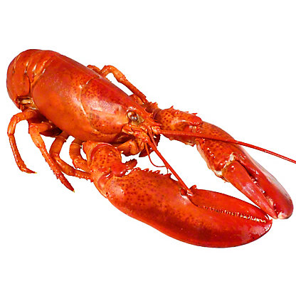 Cooked Lobster,LB