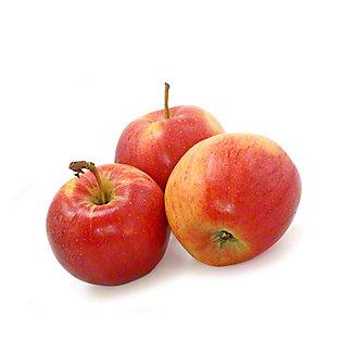 Fresh Haralson Apple