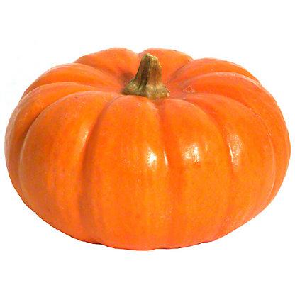 Fresh Jack B Little Pumpkins, 1.00 ea