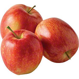 Fresh Small Gala Apples,EACH
