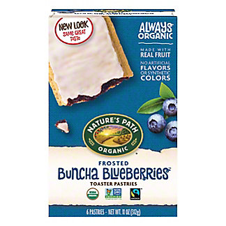 Nature's Path Organic Frosted Blueberry Toaster Pastries,6.00 ea