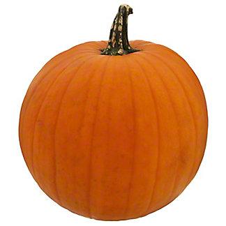 Fresh Jack-O-Lantern Pumpkin, EACH