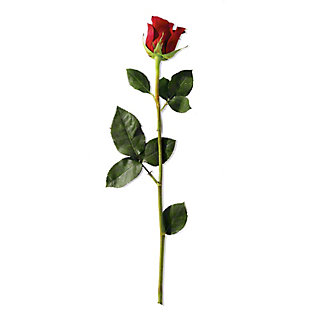 Single Stem Rose, ea