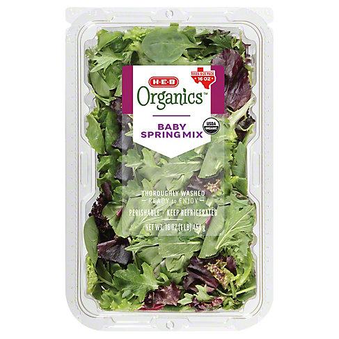 Central Market Organics Spring Mix, 16 OZ