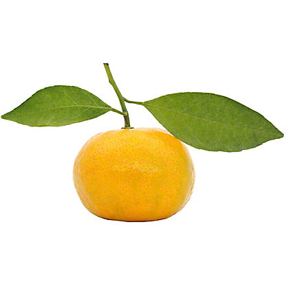 Fresh Pixie Tangerines,sold by the pound