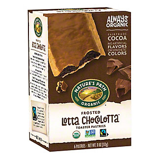 Nature's Path Organic Frosted Chocolate Toaster Pastries, 6 CT