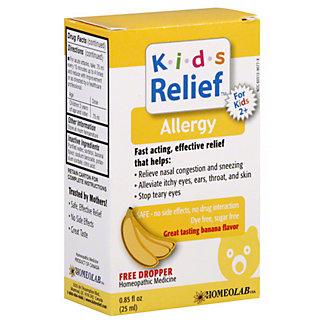 Homeolab USA Kids Relief Homeolab Kids Allergy, 0.85 oz