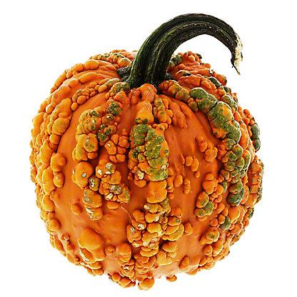 Fresh Knucklehead Pumpkins,EACH