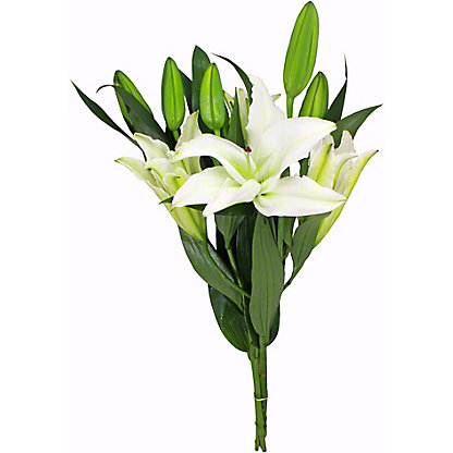 Central Market White Oriental Lilies, 3-stem bunch