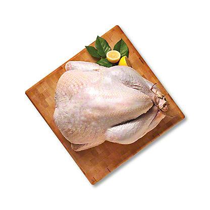 Mary's Free-Range Certified Organic Fresh Turkey, 8-12 lbs.