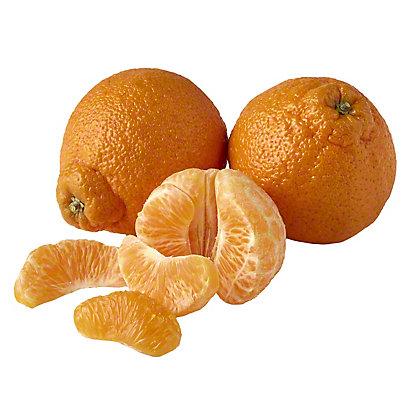 Fresh Sumo Citrus