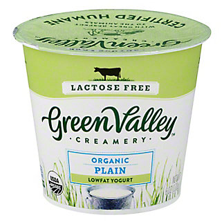 Green Valley Organic Low Fat Lactose Free Plain Yogurt,6 OZ