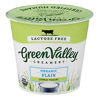 Green Valley Organic Low Fat Lactose Free Plain Yogurt,6 OZ