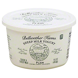 Bellwether Farms Plain Sheep Milk Yogurt,16.00 oz