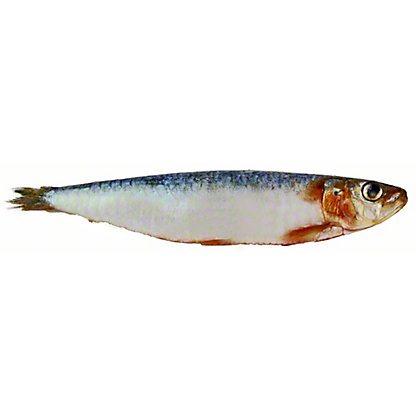 Whole Sardines,LB