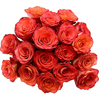 18 Stem Rose Bunch, 40 cm