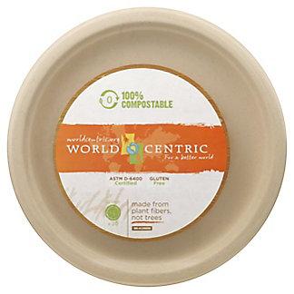 World Centric 10in Fiber Plates,20 CT