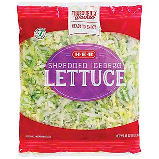 H-E-B Shredded Lettuce, 16 oz