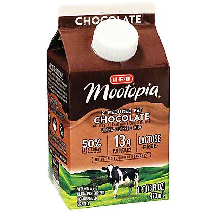 H-E-B Mootopia 2% Reduced Fat Chocolate, 16 oz
