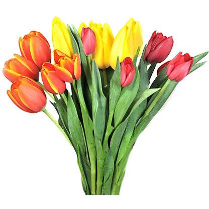 Central Market Rainbow Tulips 15-Stem, ea
