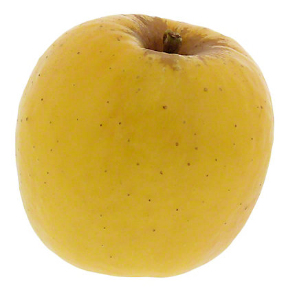 Fresh Organic Opal Gold Apples