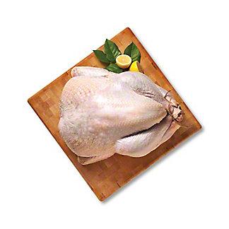 Sweet Water Creek Fresh Free-range Natural Whole Turkey 8-12, LB