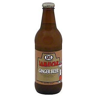 DG Jamaican Ginger Beer,12 OZ
