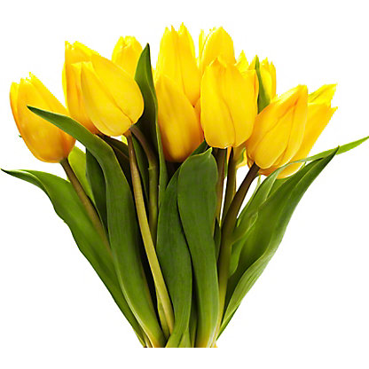Central Market Tulips, 10 Stem Bunch