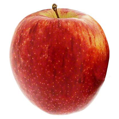 Fresh Organic Envy Apples