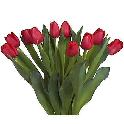 Central Market Red Tulips 10-Stem, ea