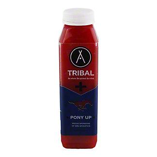 Tribal Pony Up, 12 oz