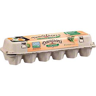 Davidsons Safest Choice Cage Free Pasteurized Eggs,12 ct