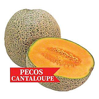 Fresh Pecos Cantaloupe, Each