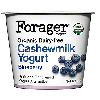 Forager Organic Blueberry Cashew Yogurt, 5.3 oz